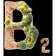 Витамин B2 (4)