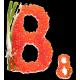 Витамин B8 (8)