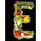 Витамин E (11)